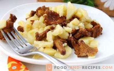 Cartofi prăjiți cu chanterelles într-un aragaz lent