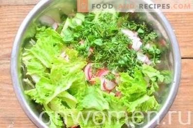Frühlingssalat mit Kohl, Gurken und Radieschen