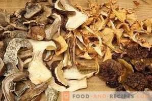 Cum se usucă ciupercile