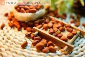 Cum se păstrează nucile de pin