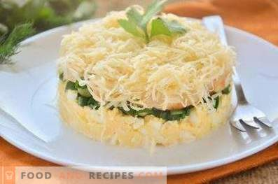 Salata stratificată cu pui, ouă și ceapă verde